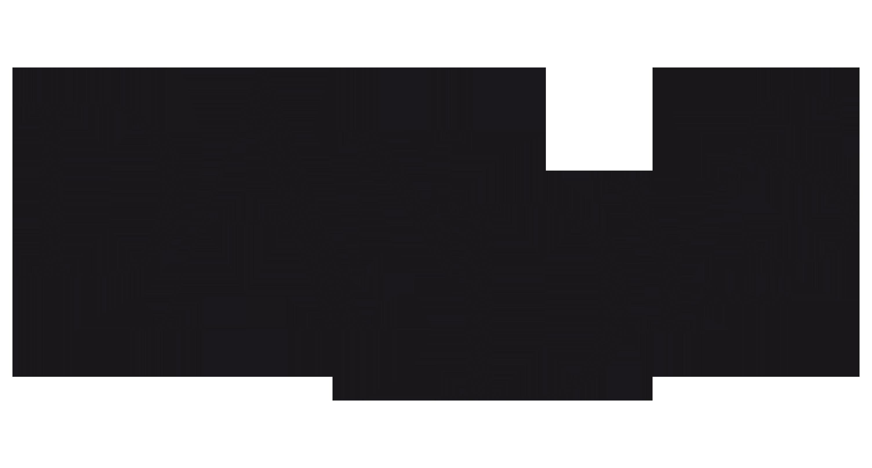 Logo dandys